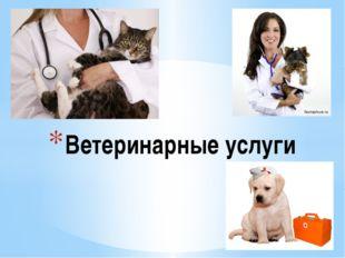 Ветеринарные услуги