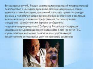 Ветеринарные службы России, занимающиеся надзорной и разрешительной деятельно