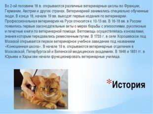 История Во 2-ой половине 18 в. открываются различные ветеринарные школы во Фр