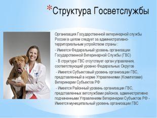 Структура Госветслужбы Организация Государственной ветеринарной службы России