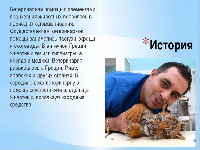 История Ветеринарная помощь с элементами врачевания животных появилась в пери...