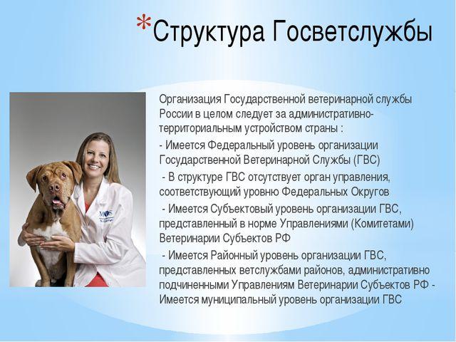 Структура Госветслужбы Организация Государственной ветеринарной службы России...