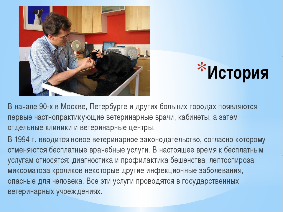 История В начале 90-х в Москве, Петербурге и других больших городах появляютс...