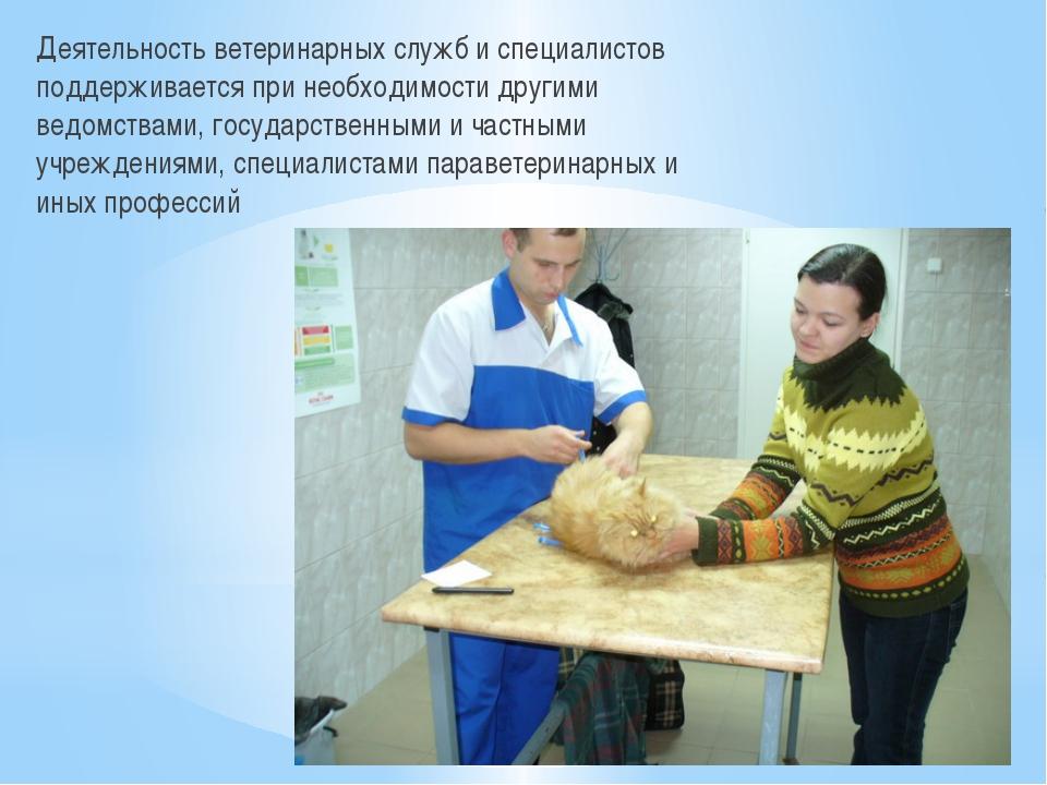 Деятельность ветеринарных служб и специалистов поддерживается при необходимос...