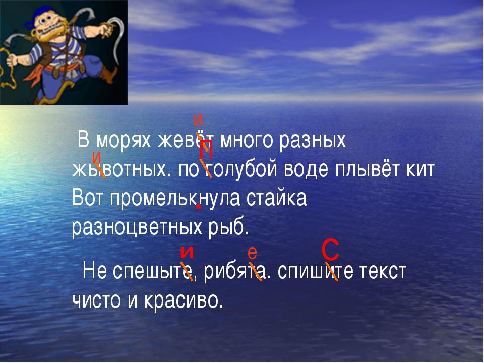 В морях жевёт много разных жывотных. по голубой воде плывёт кит Вот промельк...