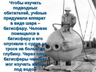 Чтобы изучать подводных обитателей, учёные придумали аппарат в виде шара – ба