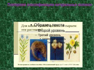 Для каких тканей являются сырьем эти растения? Иллюстрация из учебного пособ