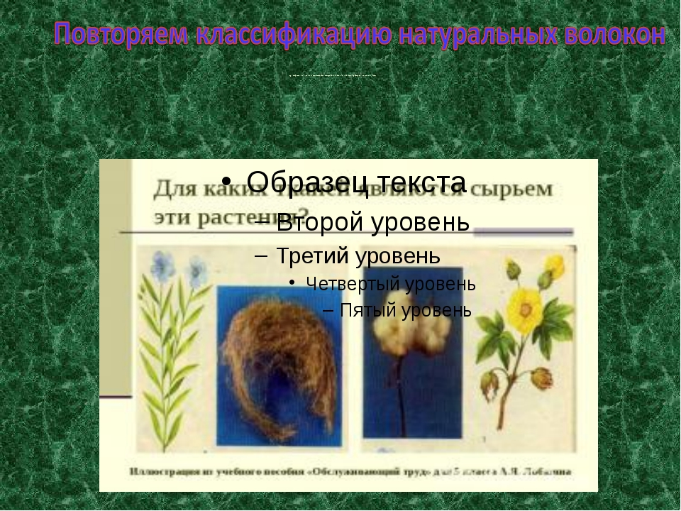 Для каких тканей являются сырьем эти растения? Иллюстрация из учебного пособ...