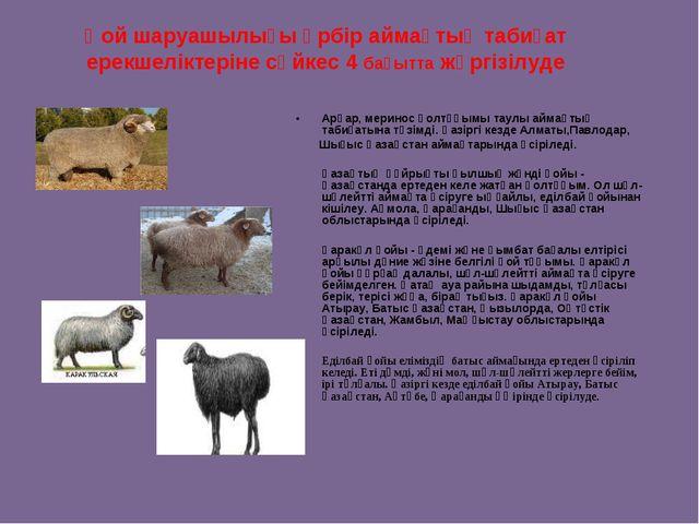 Қой шаруашылығы әрбір аймақтық табиғат ерекшеліктеріне сәйкес 4 бағытта жүрг...