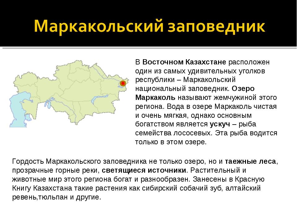 В Восточном Казахстане расположен один из самых удивительных уголков республи...