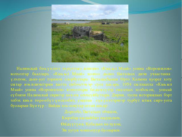 Налимскай бөһүөлэгэ төрүттэнэ илигинэ «Кыһыл Маай» уонна «Ворошилов» колхозт...