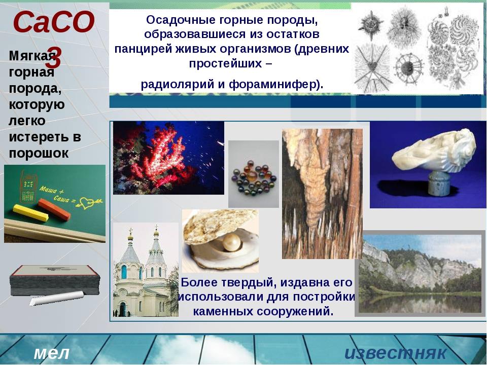 Осадочные горные породы, образовавшиеся из остатков панцирей живых организмов...
