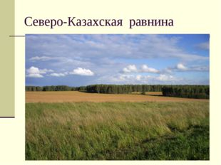 Северо-Казахская равнина