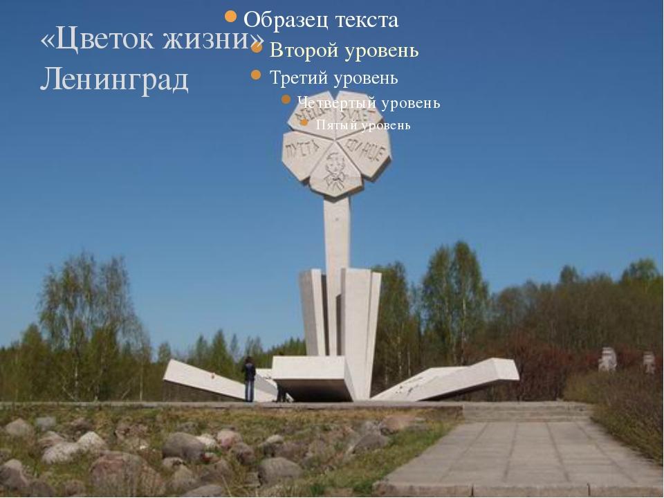 «Цветок жизни» Ленинград