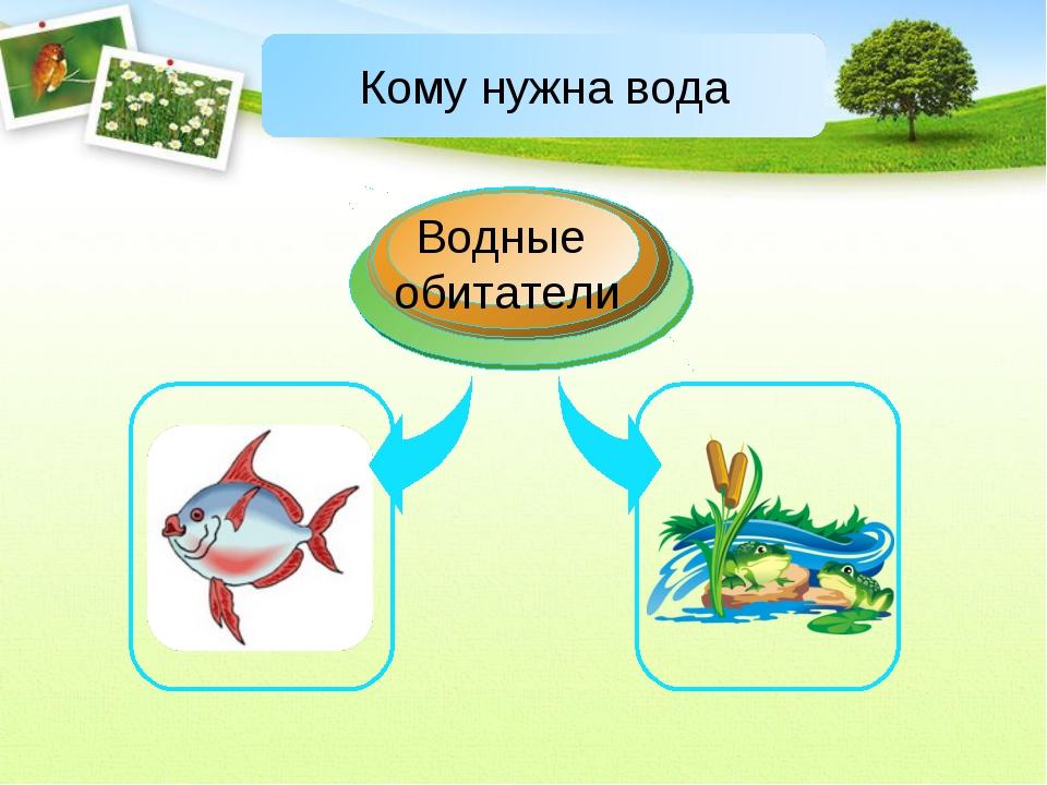 Водные обитатели