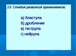 13. Стадия развития органогенеза: а) бластула б) дробления в) гаструла г) ней