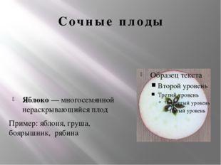 Сочные плоды Яблоко — многосемянной нераскрывающийся плод Пример: яблоня, гру