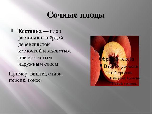 Сочные плоды Костянка— плод растений с твёрдой деревянистой косточкой и мяси...