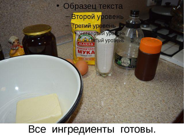 Все ингредиенты готовы.