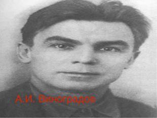 А.И. Виноградов
