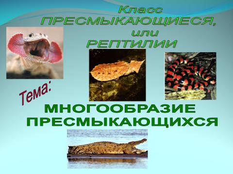 hello_html_54b94bde.png