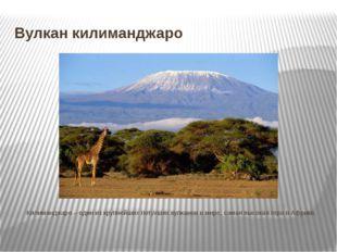 Вулкан килиманджаро Килиманджаро – один из крупнейших потухших вулканов в м