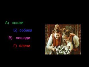 В каких животных превратились Мачеха с дочкой? А) кошки Б) собаки В) лошади Г