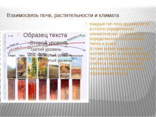 Взаимосвязь почв, растительности и климата Каждый тип почв формируется в стро