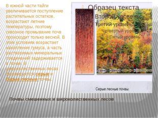 Почвы смешенных и широколиственных лесов В южной части тайги увеличивается по