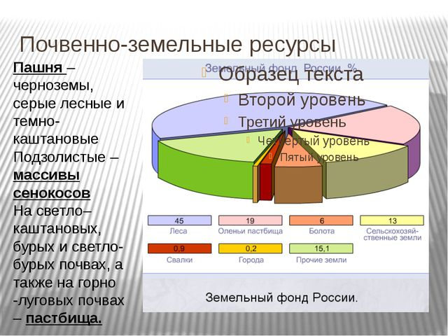 Почвенно-земельные ресурсы Пашня – черноземы, серые лесные и темно- каштановы...