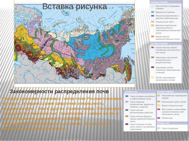 Закономерности распределения почв Распространение основных типов почв России...