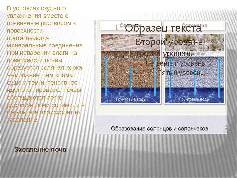 Засоление почв В условиях скудного увлажнения вместе с почвенным раствором к...