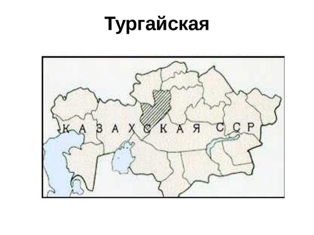 Тургайская