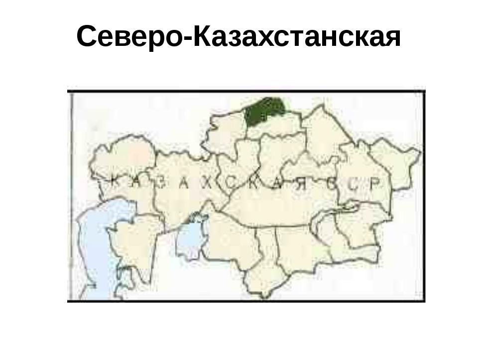 Северо-Казахстанская