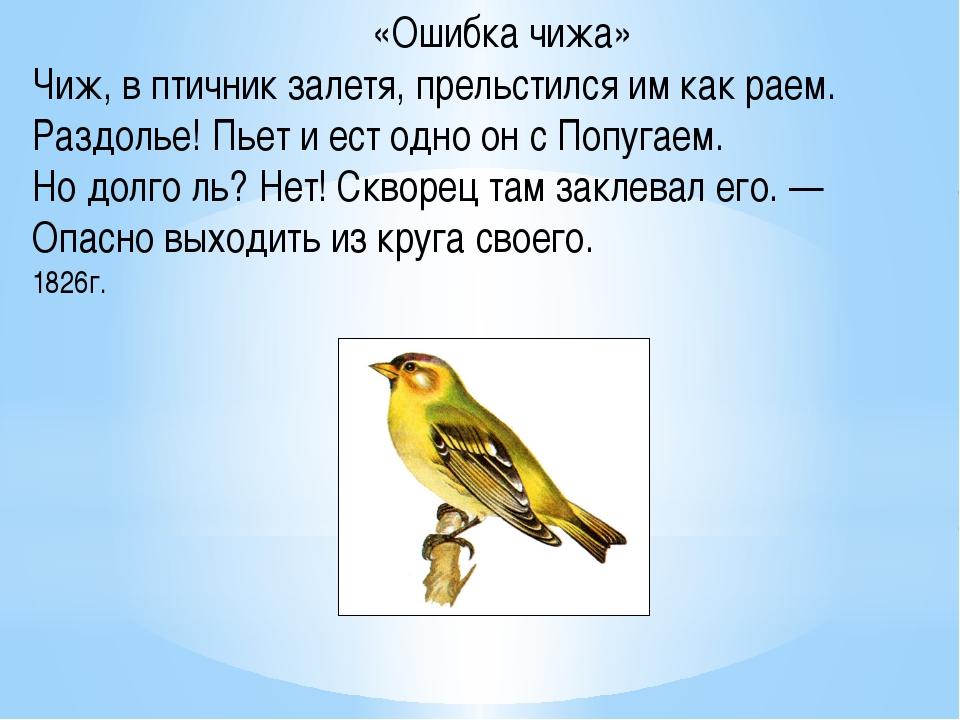 «Ошибка чижа» Чиж, в птичник залетя, прельстился им как раем. Раздолье! Пьет...
