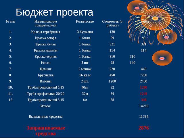 Бюджет проекта № п/пНаименование товара/услугиКоличествоСтоимость (в рубля...
