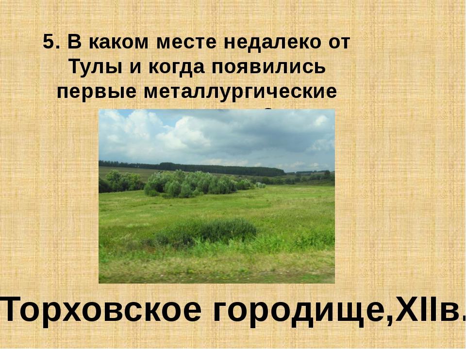 5. В каком месте недалеко от Тулы и когда появились первые металлургические п...