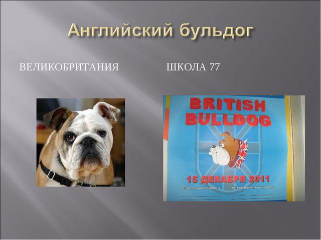 ВЕЛИКОБРИТАНИЯ ШКОЛА 77