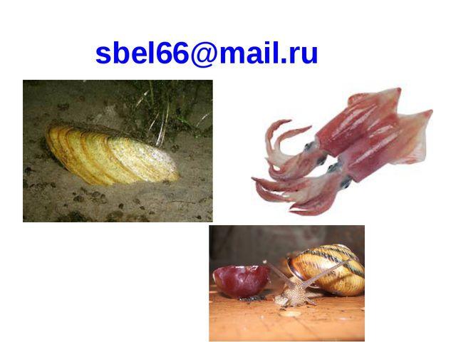 sbel66@mail.ru