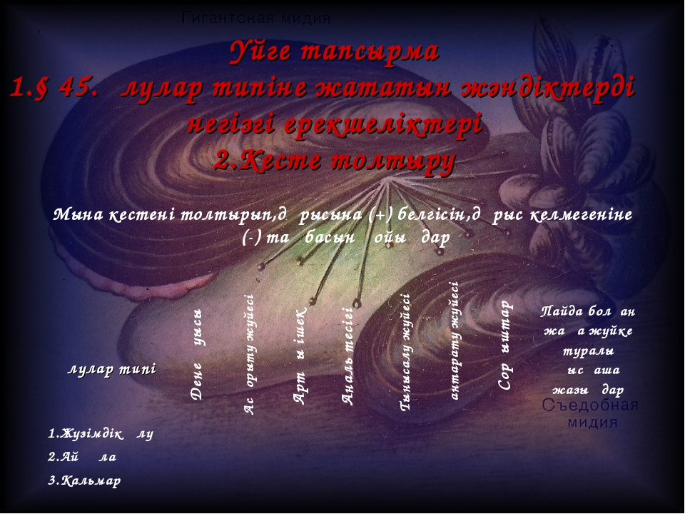 Үйге тапсырма 1.§ 45.Ұлулар типіне жататын жәндіктердің негізгі ерекшеліктері...