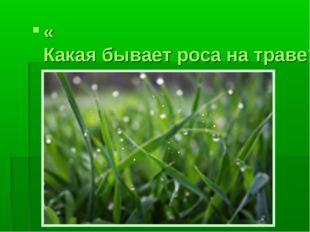 «Какая бывает роса на траве?» Л.Толстой