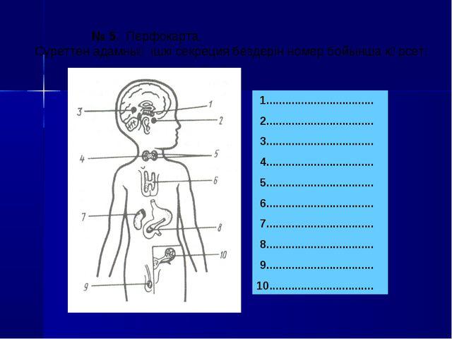 № 5. Перфокарта. Суреттен адамның ішкі секреция бездерін номер бойынша көрсе...