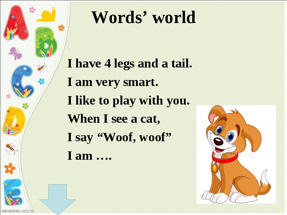 Words' world I have 4 legs and a tail. I am very smart. I like to play with y...