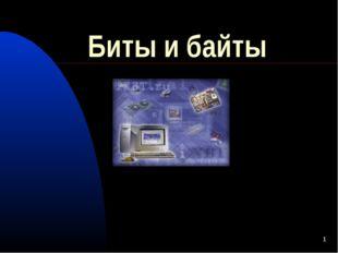 * Биты и байты Шмидт Юлии, 1Г4