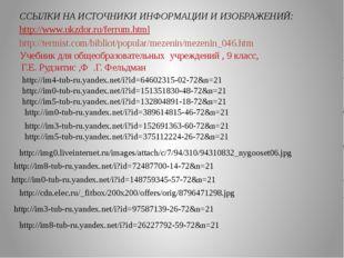 Учебник для общеобразовательных учреждений , 9 класс, Г.Е. Рудзитис ,Ф .Г. Ф