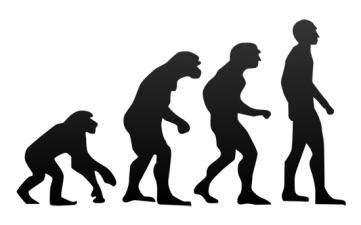 http://greenword.ru/images/evolution.jpg