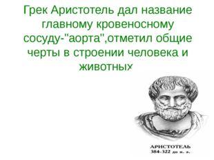 """Грек Аристотель дал название главному кровеносному сосуду-""""аорта"""",отметил общ"""