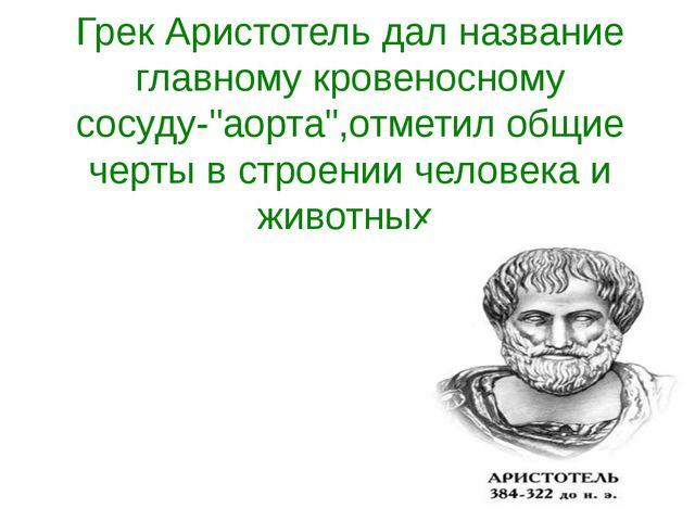 """Грек Аристотель дал название главному кровеносному сосуду-""""аорта"""",отметил общ..."""
