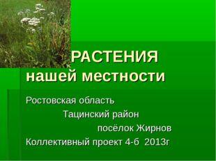 РАСТЕНИЯ нашей местности Ростовская область Тацинский район посёлок Жирнов К