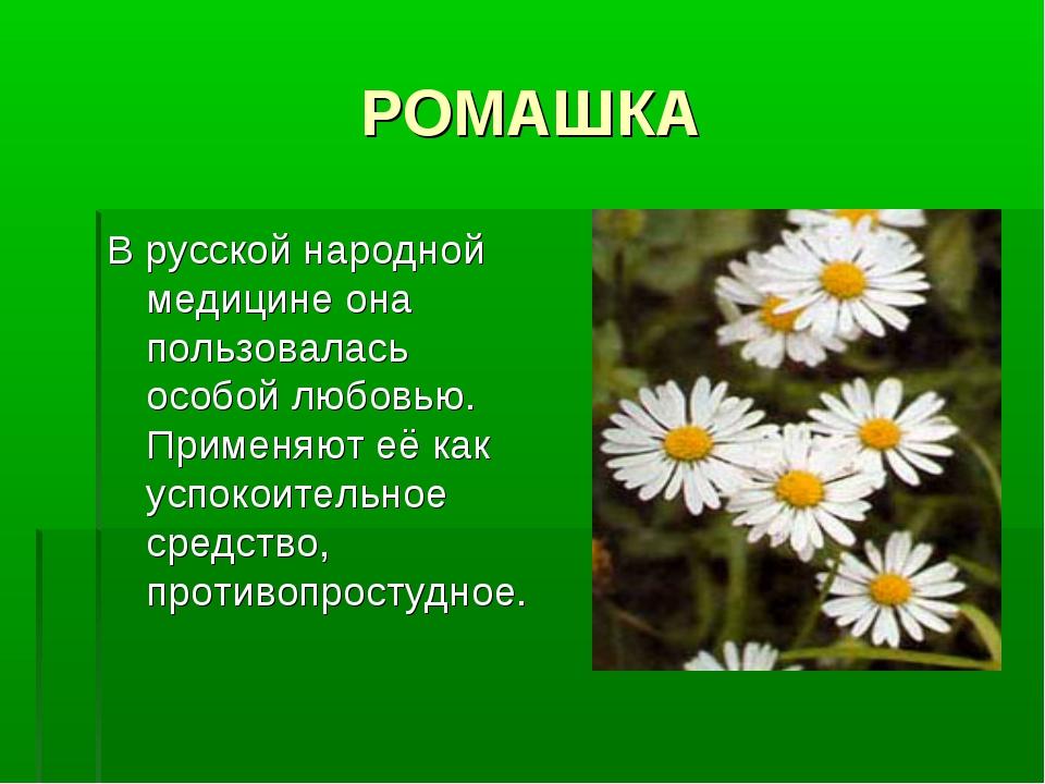 РОМАШКА В русской народной медицине она пользовалась особой любовью. Применяю...